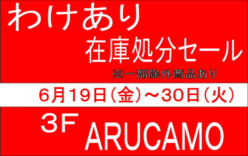 arucamo_150619.png